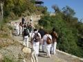 Outdoor meditation sesion during ashram visit
