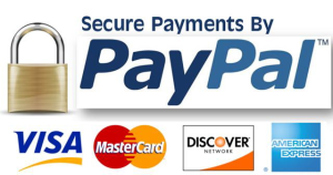 secure_paypal_paymeny-300x158