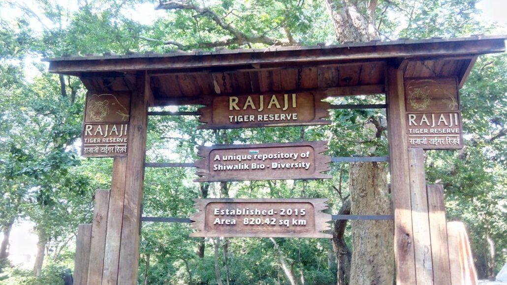 Rajaji National Park & Tiger Reserve, Rishikesh Neaxt to swarag ashram