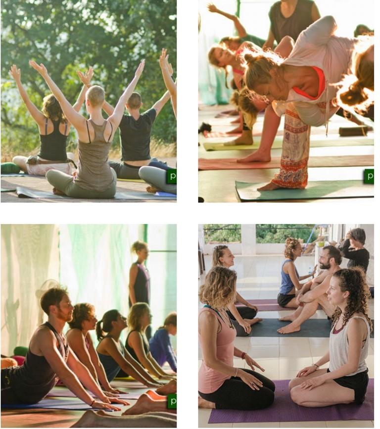 Yoga Alliance CerYin Meridians Yoga Therapy Yoga Teacher Training Goa India